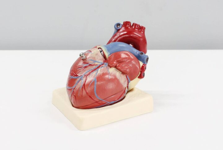 Early Detection of Heart Disease